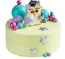 торт Мудрая сова